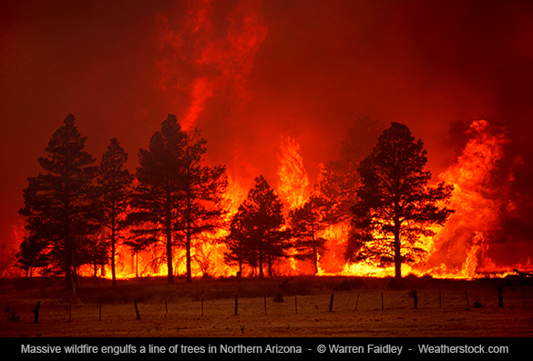 wildfire photographer warren faidley